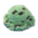 xl_mint-chocolate-chip.png