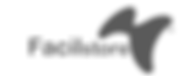 logo_cinza_facil.png