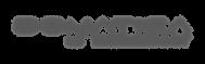 logo_cinza_domatica.png