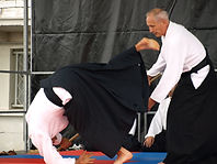 aikido chute