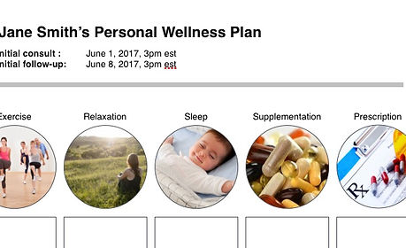wellness plan.jpg