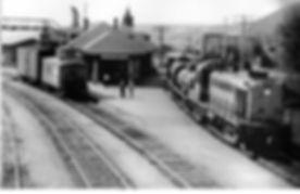TrainEntrantEnGare.jpg