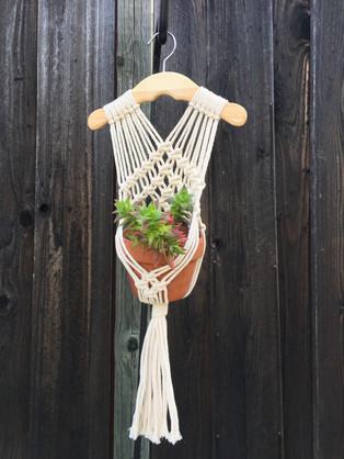 Hanger Plant Holder