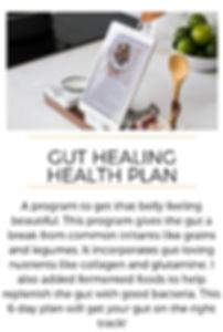 meal plan bundle - gut healing health.jp