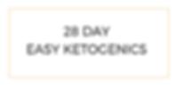 28 DAYEASY KETOGENICS.png