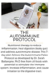 meal plan bundle - Autoimmune Protocol.j