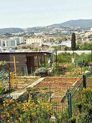 jardin-partage-parc-moline-marseille.jpg