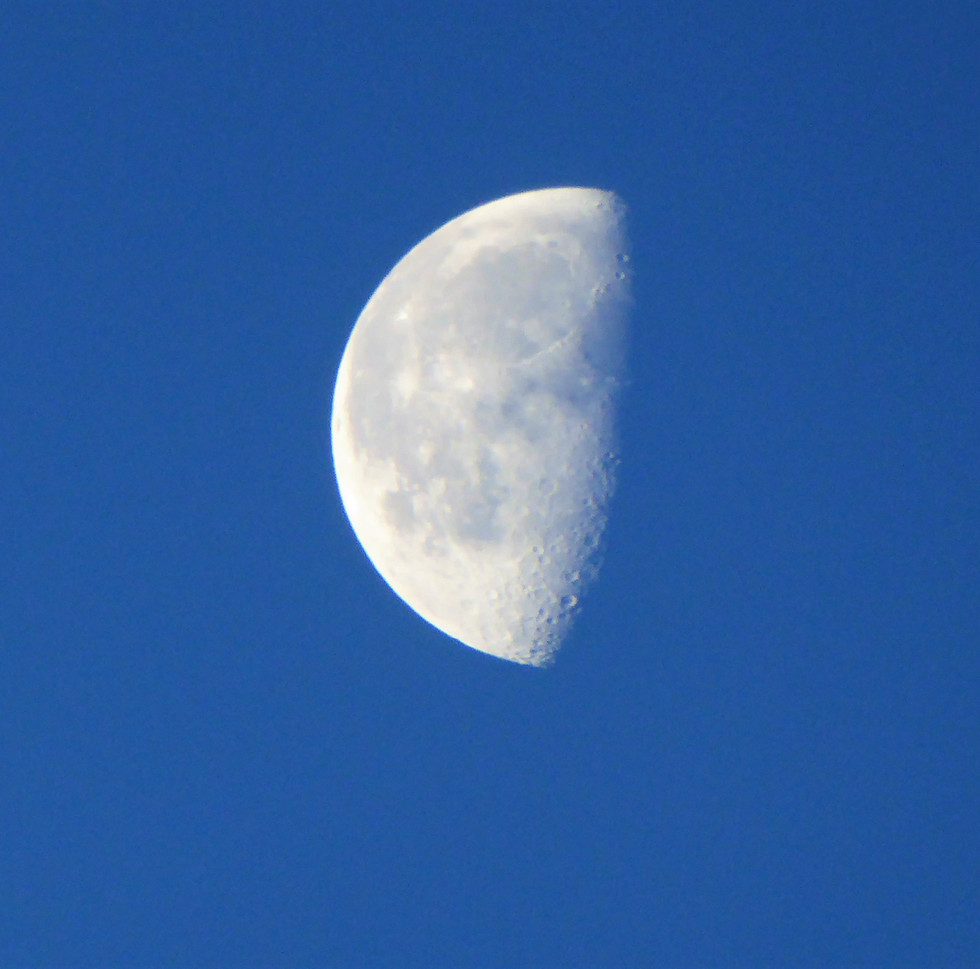 Half moon in the morning