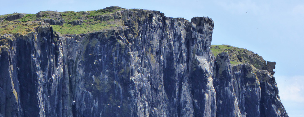 Isle of May Scotland