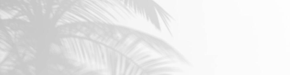 base-WHITE.jpg