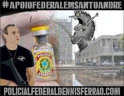 Rato_PMSA