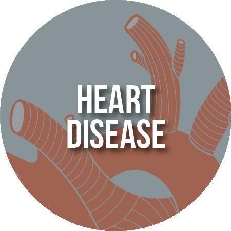 Article: Heart Disease