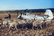 The wreckage of the Messerschmitt Bf 109