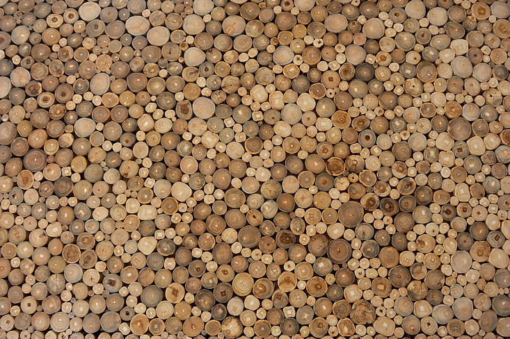 Cross-cut sectins of wood logs stacked randmly