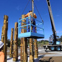 Pine Forest Installation