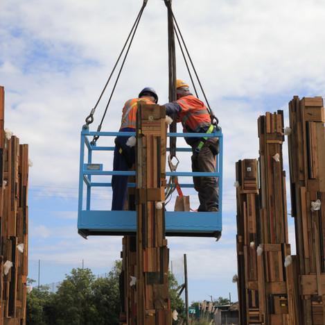 Pine Forest Installation Day