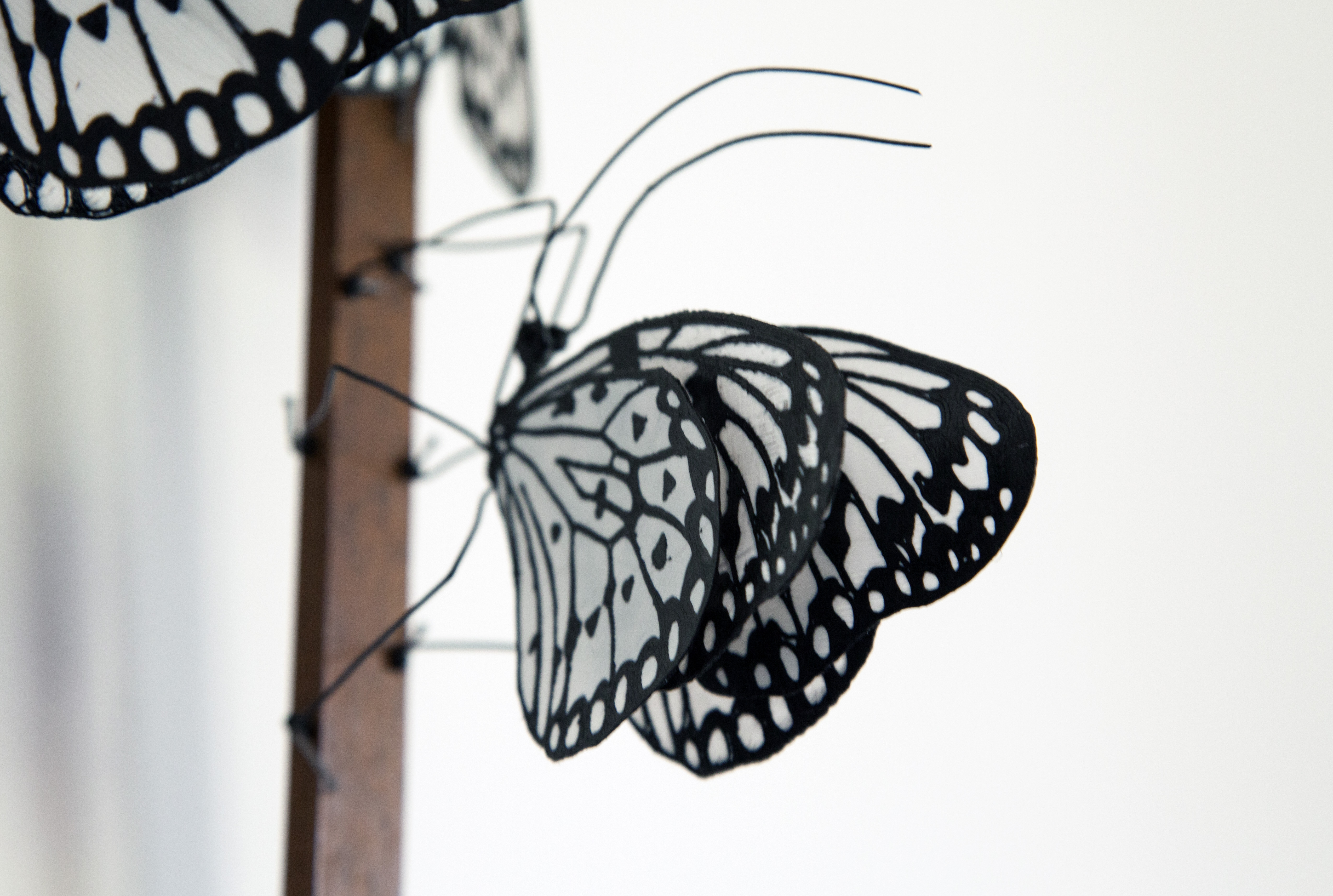 3D Printed Butterfly