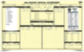 USA Hockey score sheet labels