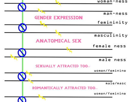 Gender, sexuality mapping + trying on labels.