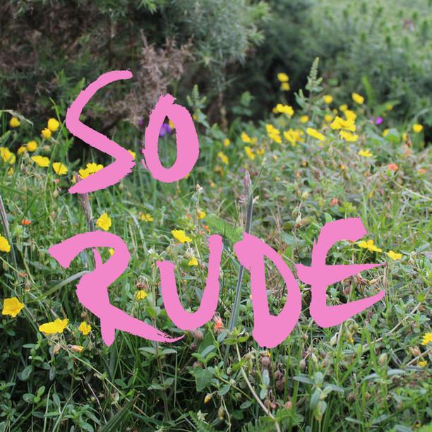 6 RUDE FLOWERS BOOK.jpg