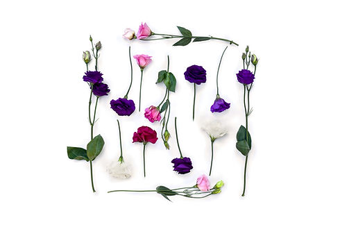 Frame of violet, white, pink flowers Eus
