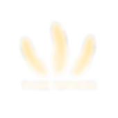 logo-bright.png