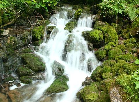 H2Ochschwab-Wanderung - wandern im Hochs