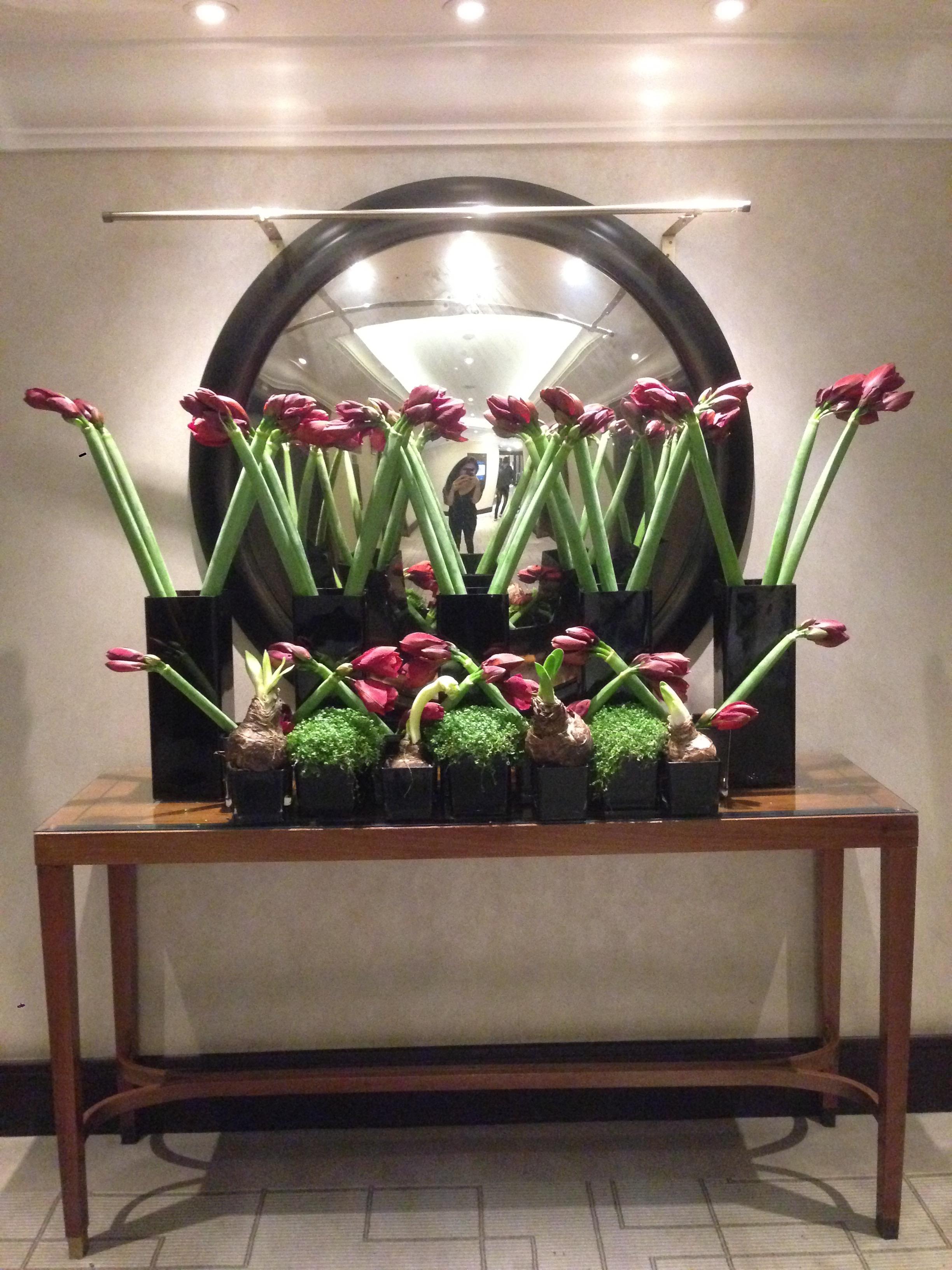 Intercontinental Florals
