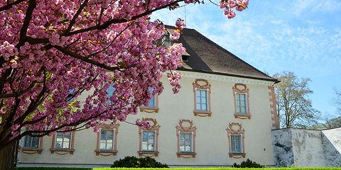 Hofburg_BlüteHerrengarten.1800x900.jpg