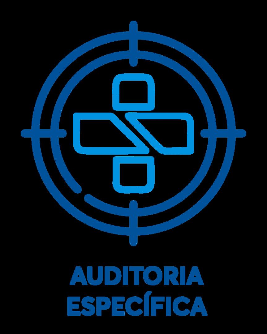 auditoriaespecifica.png