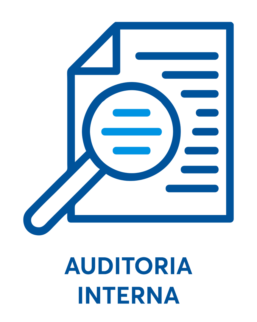 auditoriainterna.png