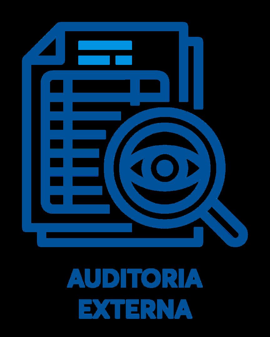 auditoriaexterna.png