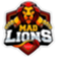 MAD_Lions_E.C.logo_square.png
