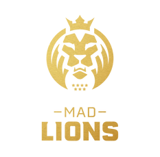 Mad_Lions_Global_Assets_Primary_Texture.