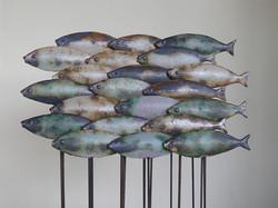 Fisch3_web.jpg