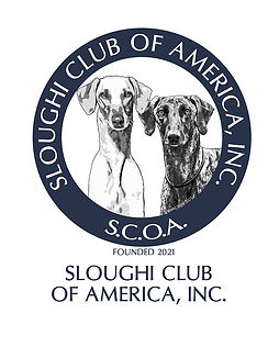 S C O A Logo SM.jpg