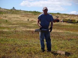 2010 blueberry raking plus 174.jpg