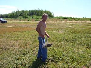 2010 blueberry raking plus 183.jpg