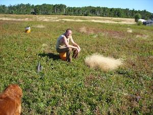 2010 blueberry raking plus 134.jpg