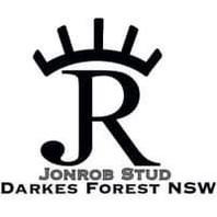 Darkes Forest