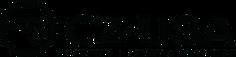 cz-usa-black-312w-75h.png