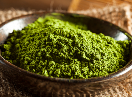 What is Matcha & how did it help me heal and calm my skin?