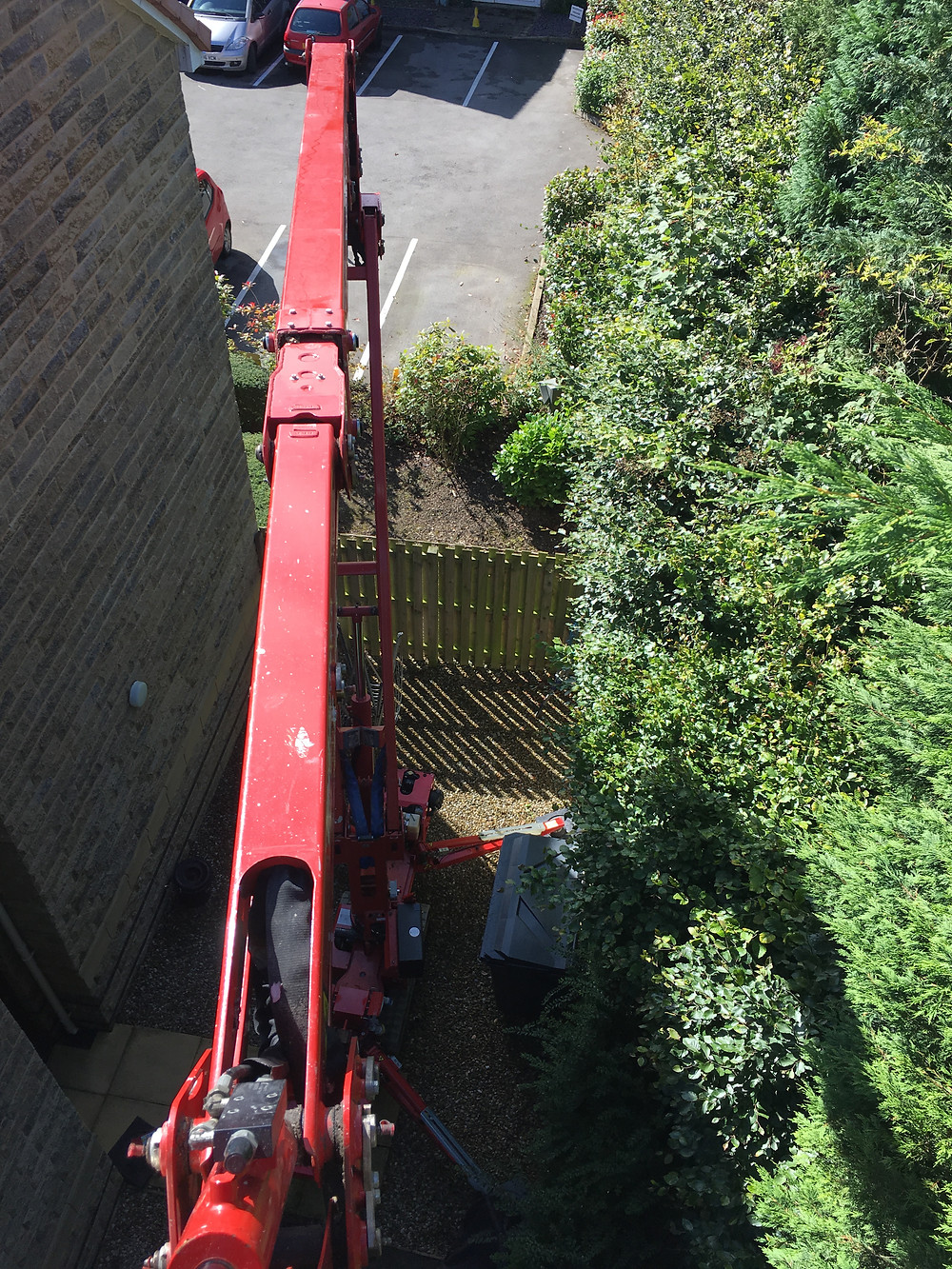Cutting conifers from access equipment