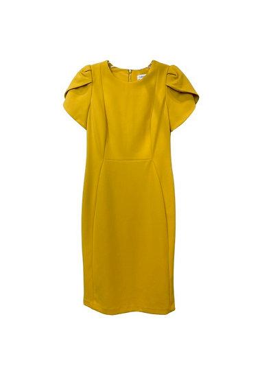 Calvin Klein Mustard Dress
