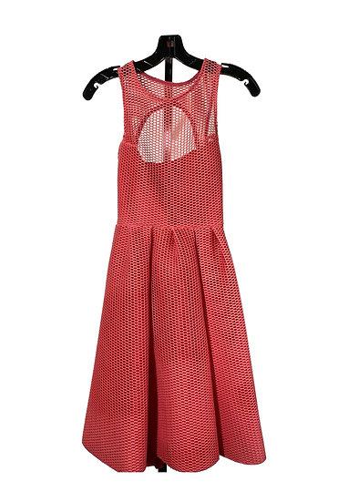 Salmon Netted Dress