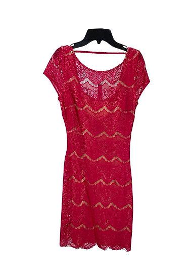 Bebe Hot Pink Lace Dress
