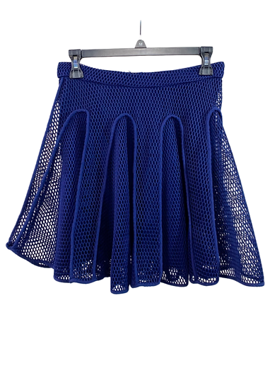 Blue Netted Skirt
