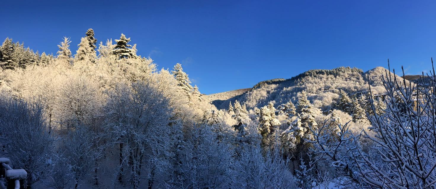 Magico Inverno