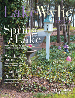 LWT Spring 2020 Cover