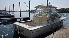 newboat5.jpg